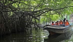 Day 02 - Balapitiya (Boat Safari on Madu River)