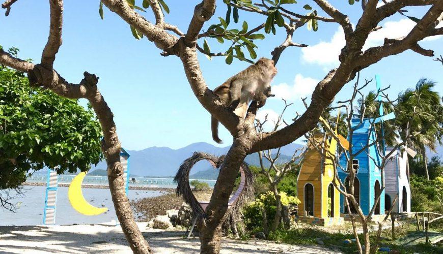 Monkey-Island-Tour-Nha-Trang